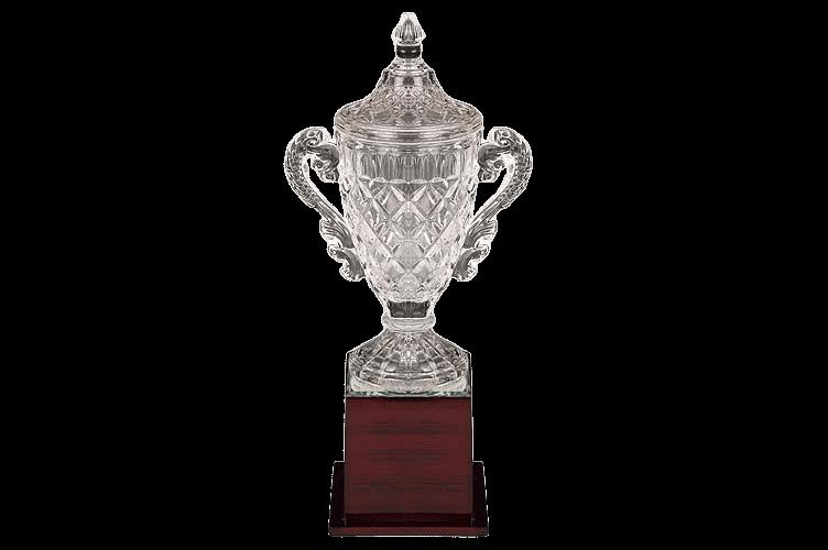 Acrylic Sports Trophy - AC3066