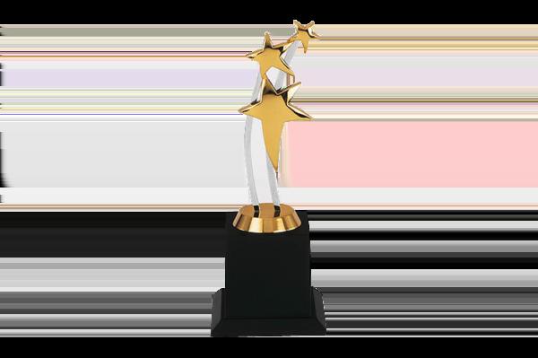 Acrylic Star Performance Trophy - WM2163