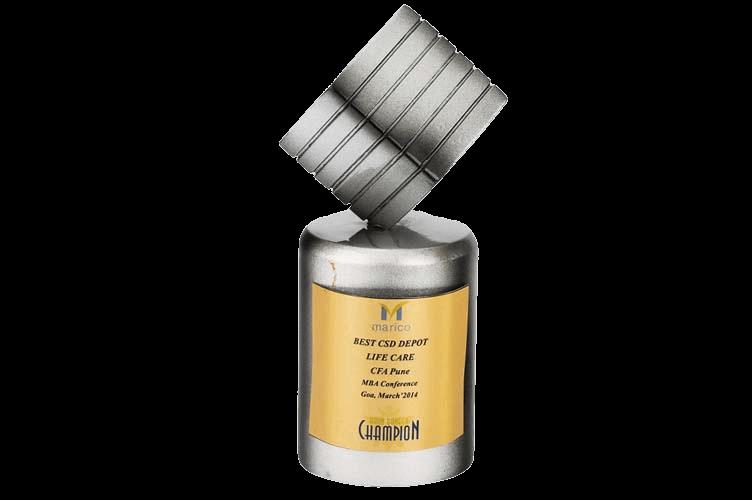 Corporate Metal Trophy - WM2165